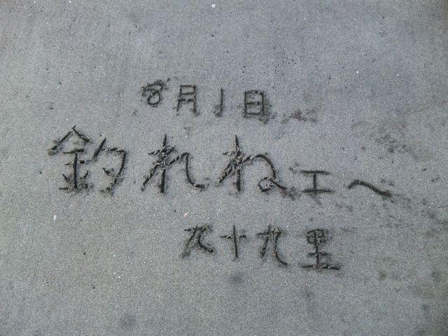 2010_08010175